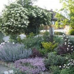 Gartenanlage Ybbs