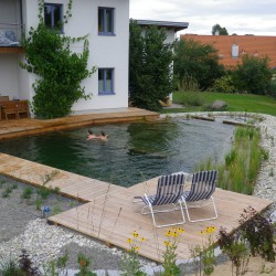 Schwimmteich im Waldviertel