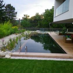 Moderner Schwimmteich Enns