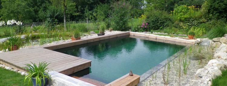 Naturpool und Gartenteich