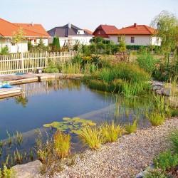 Schwimmteich Mostviertel
