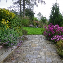 Gartenmauern und Pflasterungen