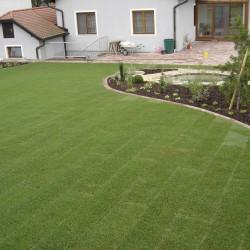 Fertig Rasen