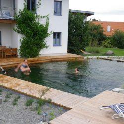 Schwimmteich Waldviertel