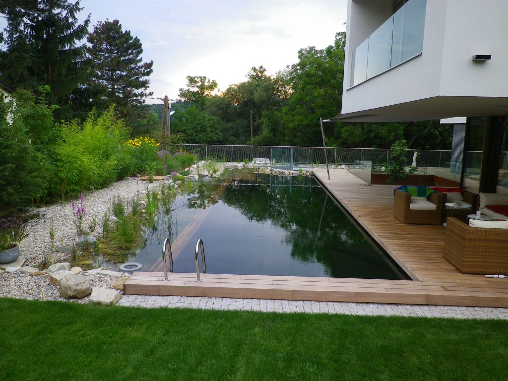 eolas garten schwimmteiche zum sport badespa und natur genie en. Black Bedroom Furniture Sets. Home Design Ideas