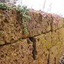 Natursteinmauer Tuff