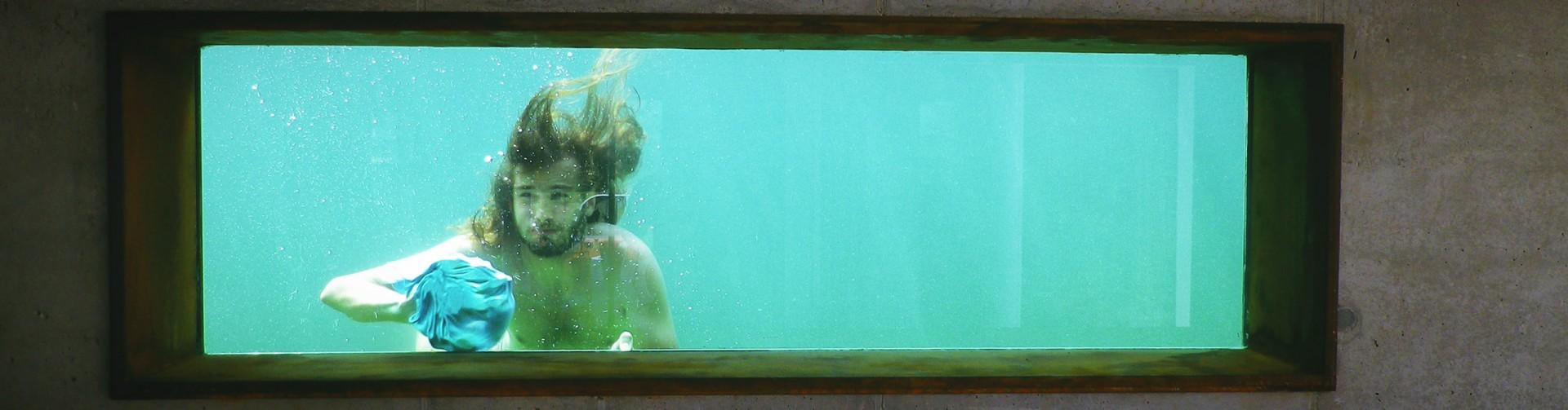 Schwimmteich Fenster