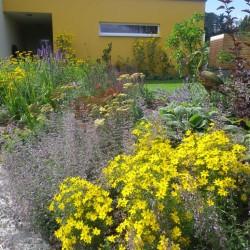 Gartengestaltung Oberösterreich