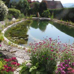 Schwimmteich Mühlviertel