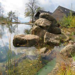 Sprungfelsen Schwimmteich