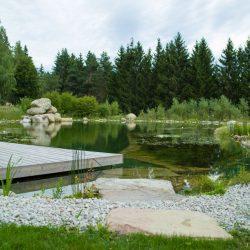 Teich Mühlviertel