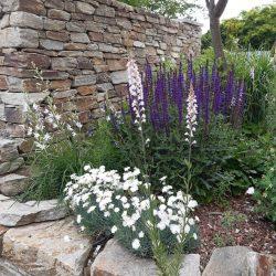 Steinmauer & Bepflanzung