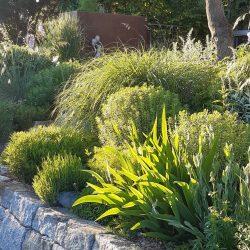 Gartengestaltung professionell